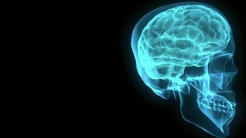 Стоматологи могут остаться без рентгена